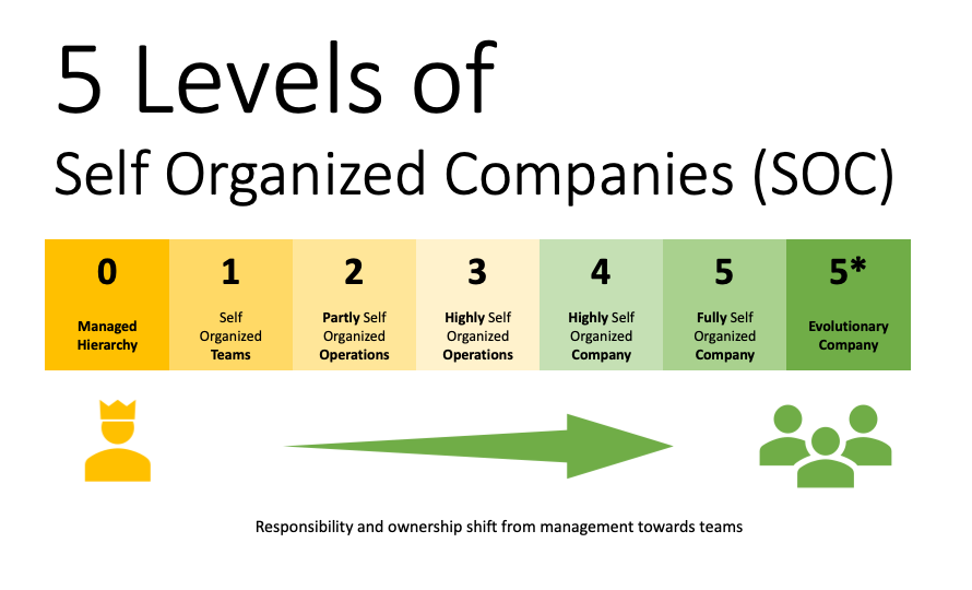 5 Levels of self organized companies